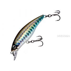 Воблер Fishycat Straycat 55F (3,9г) R09